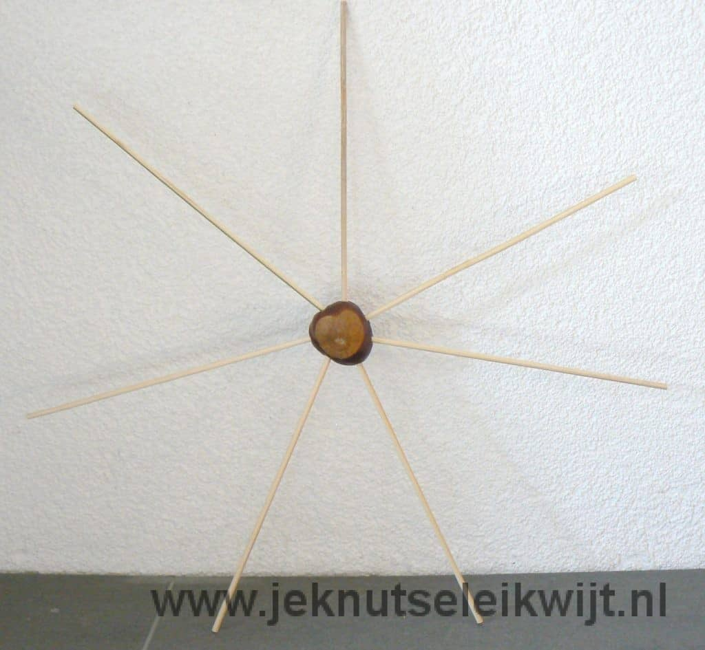 herfst kastanjes spinnenweb